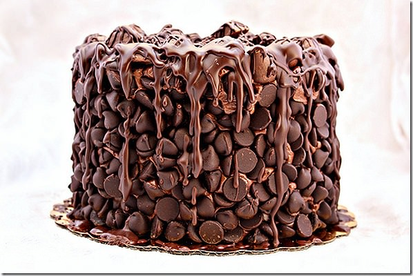 chocolatewastedcake
