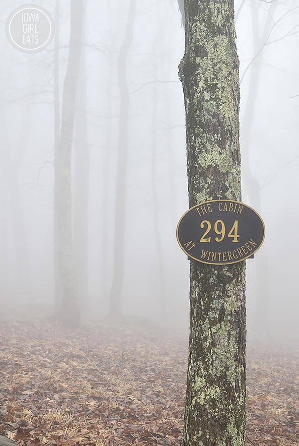 Foggy-Walk-iowagirleats-03