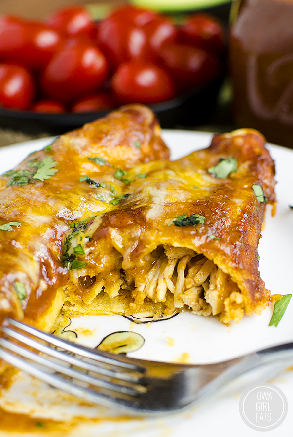 Cheesy Chicken Enchiladas with Homemade Gluten-Free Enchilada Sauce will please the whole family. Make ahead, and so simple! #glutenfree | iowagirleats.com