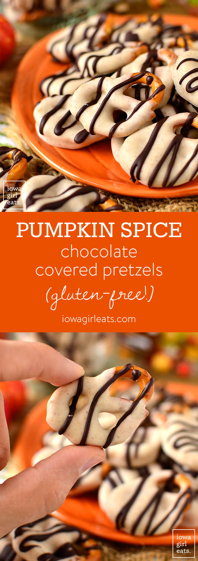 Pumpkin Spice Chocolate Covered Pretzels are absolutely irresistable - dare you to stop at just one! This easy gluten-free dessert recipe calls for just 4 ingredients, and 15 minutes. | iowagirleats.com