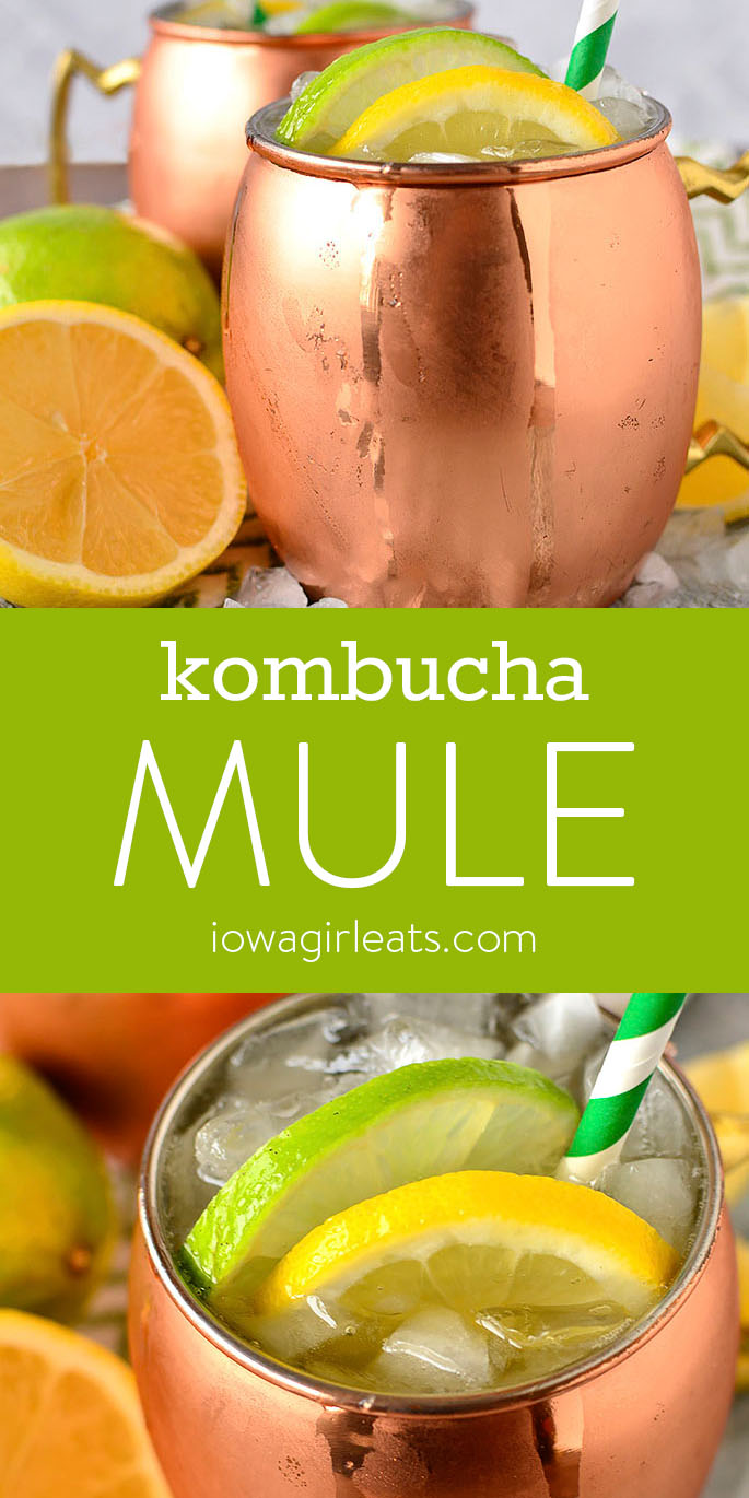 Photo collage of Kombucha Mules