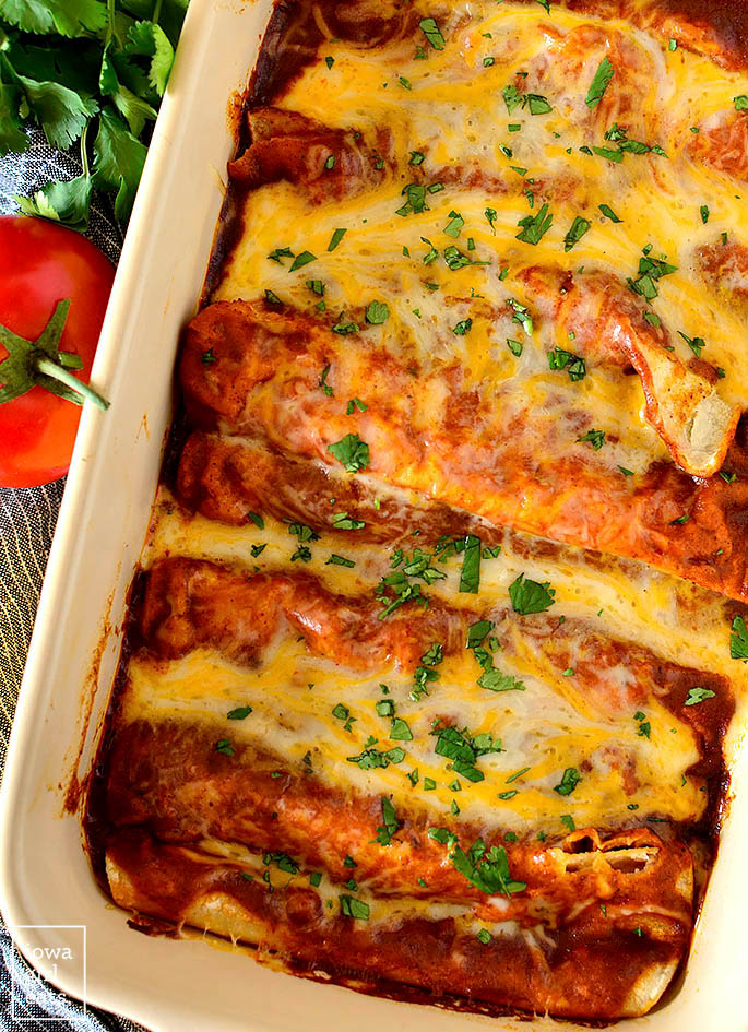 Overhead photo of a baking dish of Cheese Enchiladas with Red Sauce